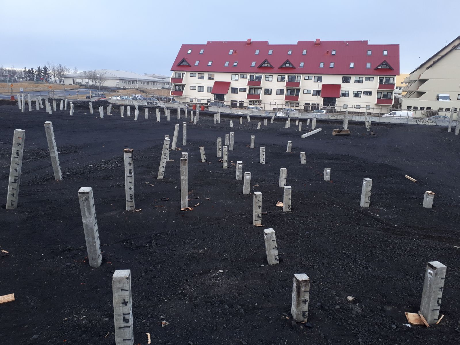 Vertical and raked piles in Iceland